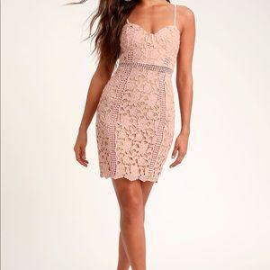 Giovanni Blush Lace Sleeveless Dress Lulus Small